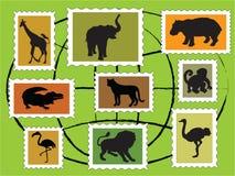 Dieren Stock Afbeelding