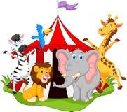 Dieren in circusbeeldverhaal Stock Afbeelding