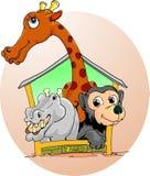 Dieren in de dierentuin Royalty-vrije Stock Afbeeldingen