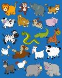 Dieren - de tekeningen van het Jonge geitje Stock Foto