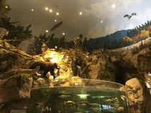 Dieren en vissen stock afbeelding