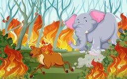 Dieren vanaf wildfire in werking die worden gesteld die royalty-vrije illustratie