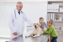 Dierenarts die een hond met zijn eigenaars onderzoeken Royalty-vrije Stock Foto