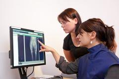 Dierenarts die x-ray beeld verklaart Stock Foto