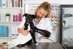 Dierenarts met zijn hond Amerikaanse Staffordshire stock foto