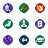 Dierenartskliniek Behandeling van zieke dieren Het ziekenhuis voor dieren Het pictogram van de dierenartskliniek in vastgestelde  Royalty-vrije Stock Foto