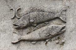 Dierenriem - Vissen of vissen Royalty-vrije Stock Fotografie