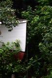 Dierentuinatmosfeer Royalty-vrije Stock Foto