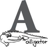 Dierlijk alfabet A (alligator) Royalty-vrije Stock Afbeeldingen