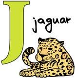 Dierlijk alfabet J (jaguar) Royalty-vrije Stock Foto