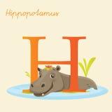 Dierlijk alfabet met nijlpaard Stock Afbeeldingen
