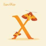Dierlijk alfabet met xanthie Stock Afbeeldingen