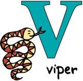Dierlijk alfabet V (adder) Royalty-vrije Stock Afbeeldingen