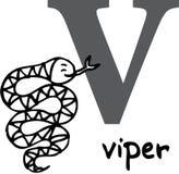 Dierlijk alfabet V (adder) Stock Afbeeldingen