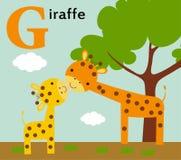 Dierlijk alfabet voor de jonge geitjes: G voor de Giraf Stock Afbeelding