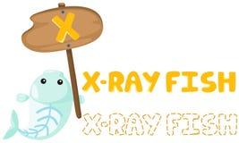 Dierlijk alfabet x met x-ray vissen Stock Afbeeldingen