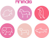 dierlijk Landbouwbedrijf Royalty-vrije Stock Foto's