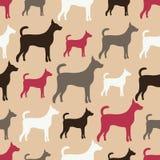 Dierlijk naadloos vectorpatroon van hondsilhouetten Stock Foto