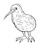 Dierlijk overzicht voor kiwivogel vector illustratie