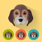 Dierlijk Portret/Hond Stock Afbeelding