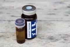 Dierlijk vaccin voor dier om dierlijke huid te helen Stock Afbeelding