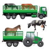 Dierlijk vervoer Stock Foto