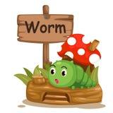 Dierlijke alfabetbrief W voor worm Royalty-vrije Stock Afbeelding