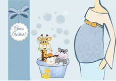 Dierlijke babydouche Royalty-vrije Stock Fotografie