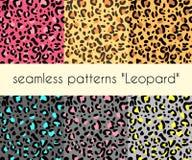 Dierlijke de patronenvector van de huid naadloze luipaard Reeks van 6 patronen stock illustratie