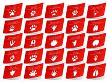 Dierlijke geplaatste spoorstickers Royalty-vrije Stock Foto