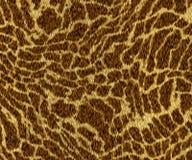 Dierlijke huid Stock Foto