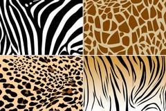 Dierlijke huidtextuur Royalty-vrije Stock Foto