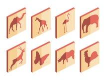 Dierlijke isometrische pictogramreeks Zoogdieren en vogels Geïsoleerde pictogrammen op witte achtergrond Vector vector illustratie