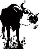 Dierlijke koe Royalty-vrije Stock Afbeeldingen