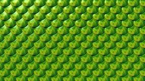 Dierlijke Schalen stock illustratie