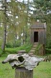 Dierlijke schedel voor houten toren Stock Foto