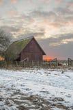 Dierlijke schuilplaats bij zonsopgang Stock Foto