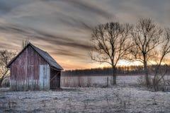 Dierlijke schuilplaats en zonsopgang Royalty-vrije Stock Afbeelding