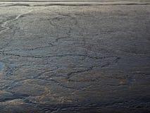 Dierlijke sporen in mudflats in het estuarium van Weser-rivier royalty-vrije stock afbeeldingen