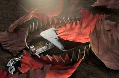 Dierlijke Val in Bladeren royalty-vrije illustratie