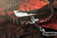 Dierlijke Val in Bladeren vector illustratie