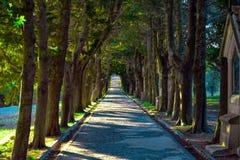 Diese Straße den Weg von Christus zu seinem Kreuz symbolisieren stockbild