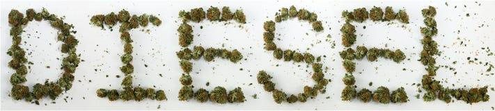 Diesel compitato con marijuana Immagini Stock