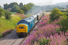 Diesel railway excursion Royalty Free Stock Images