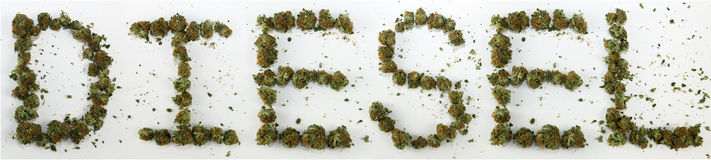 Diesel soletrado com marijuana Imagens de Stock