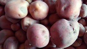 Dieses ist Kartoffel lizenzfreie stockbilder