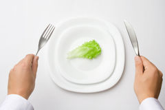 On a diet. Concept of healthy eating / dieting Royalty Free Stock Images
