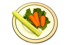 Diet. Isolated plate with a small portion of vegetables over a white background Royalty Free Stock Photo