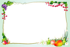 Diet border with fruits and flowers Stock Photos
