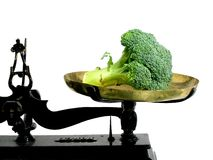 Diet broccoli. Broccoli on a tray scale as a suggestion that vegetables are good for diet royalty free stock photo